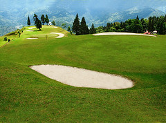 pitch and putt, sports, golf, golf course, grassland,