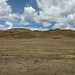 Small photo of El Altiplano