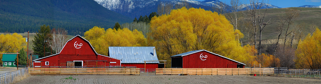 Libby, Montana 2010