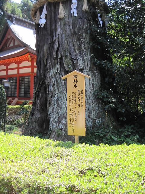 katori-jingu 香取神宮