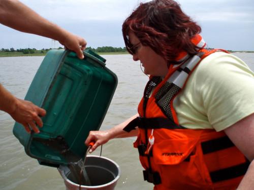 NOAA Mussel Watch: Sieving a Sediment Sample