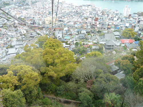 trees houses building japan buildings aerial roofs views onomichi honshu ropeways