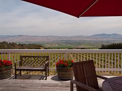 California Wineries & Vineyards