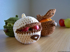 Ninja Apple Cozy