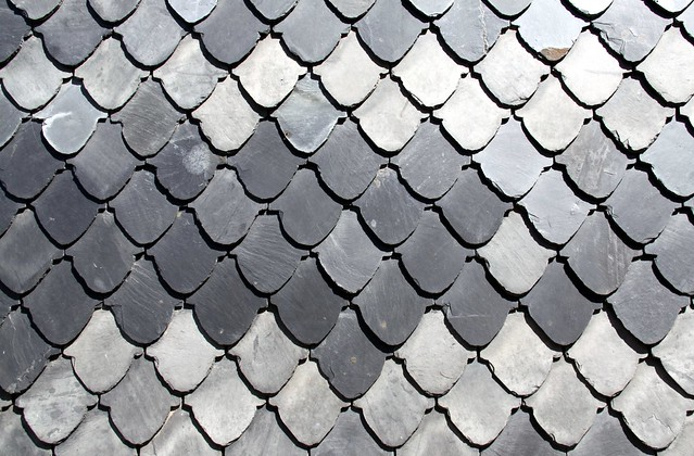 Slate tile pattern fish scale pattern flickr photo for Fish scale shingles