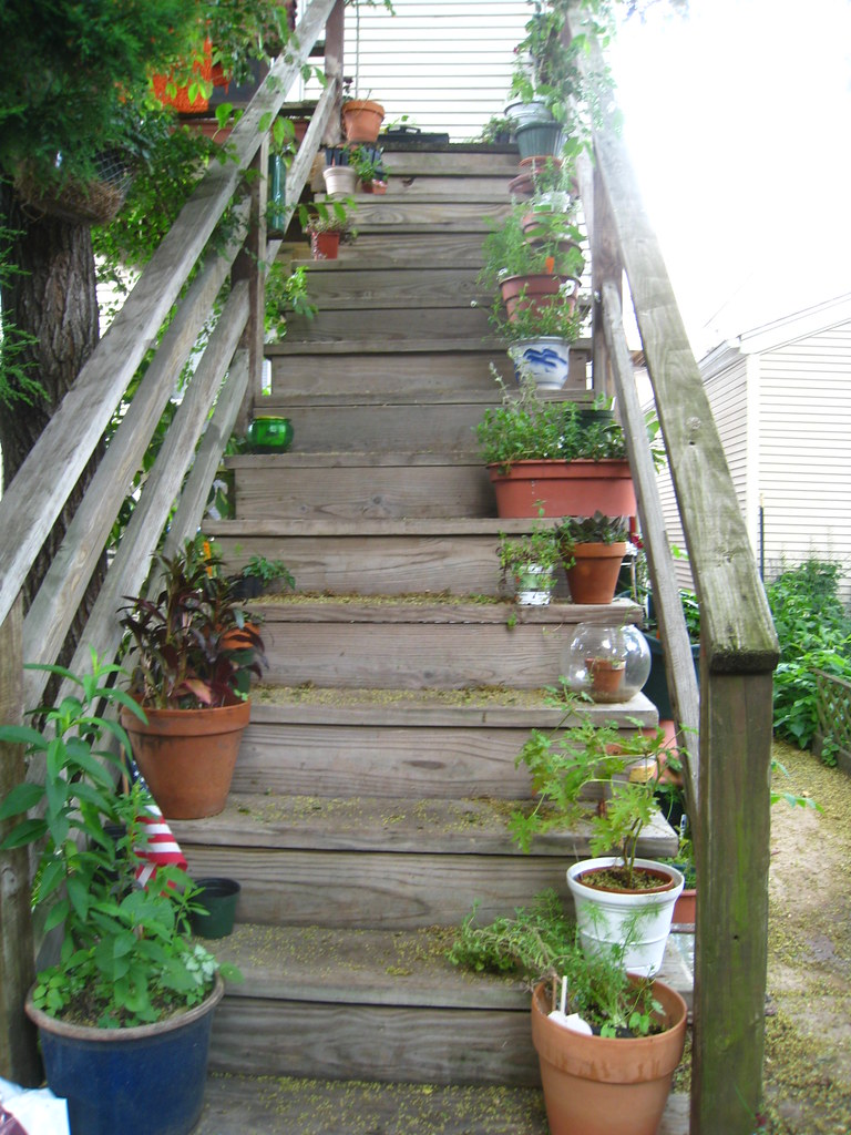 garden on a stair
