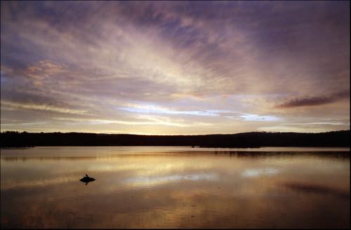leica light sunrise sweden m4p svärdsjö