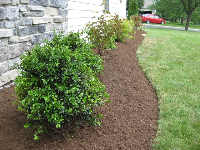 Landscaping Your Side Yard : Side yard landscaping flickr photo sharing