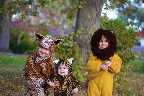costumes4