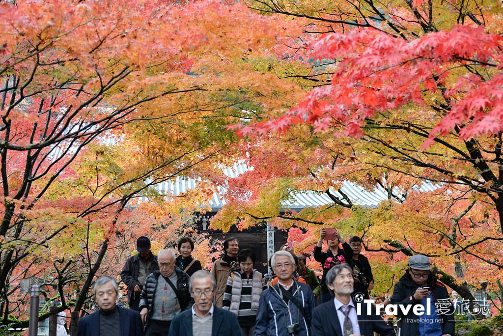 京都赏枫景点 永观堂 (50)