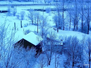 A snowy view of the cold countryside's night