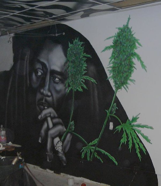 Bob marley mural flickr photo sharing for Bob marley mural