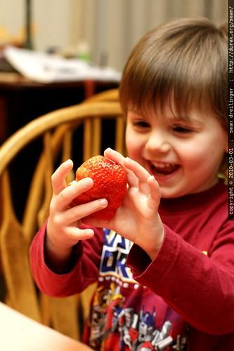fist sized strawberry