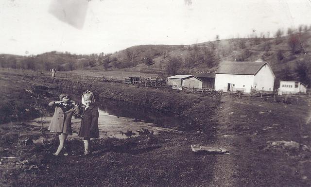 Farm in Star Valley, Wisconsin (1941)