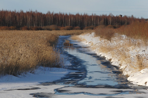 snow ice nice europe estonia special lumi coldweather casioexilim eesti estland jää снег võru võrumaa photoimage sooc külm gisteqphototrackr exf1 geosetter year2010 geotaggedphoto фотоfoto gettyimagesestoniaq2