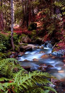 Unicorn Creek