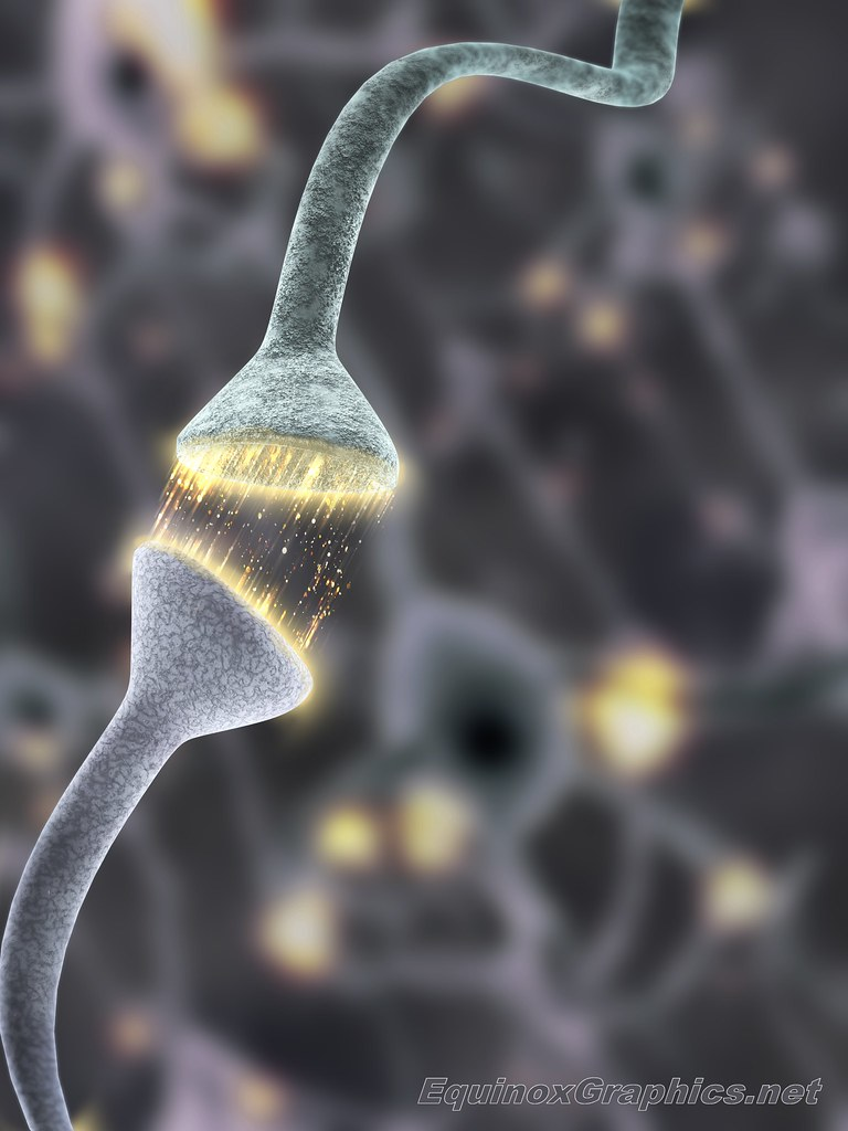 Image:Firing Synapses
