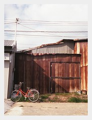rust and bicycle