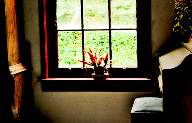A lonely vase by the Window