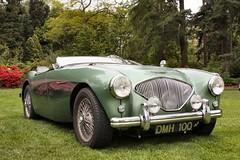 jaguar xk140(0.0), morgan +4(0.0), aston martin db2(0.0), mg mga(0.0), austin-healey 3000(0.0), jaguar xk150(0.0), ac ace(0.0), austin-healey sprite(0.0), race car(1.0), automobile(1.0), vehicle(1.0), automotive design(1.0), austin-healey 100(1.0), antique car(1.0), classic car(1.0), vintage car(1.0), land vehicle(1.0), convertible(1.0), sports car(1.0),