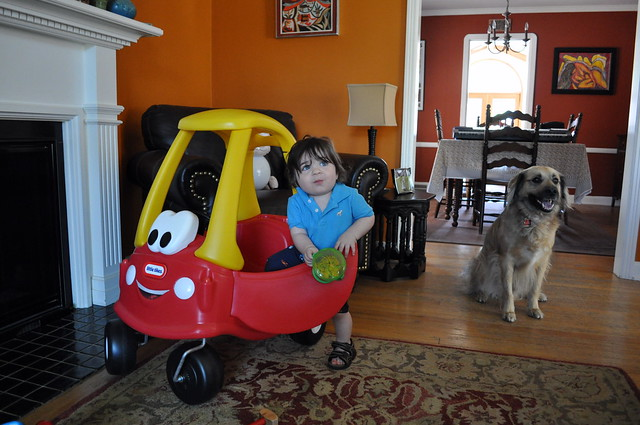 Cozy N Safe Car Seat Reviews