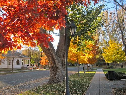 autumn nevada minden douglascounty mindenpark