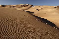 Great Sand Dunes National Park - Nov 2010
