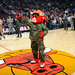 Benny the Bull supporting all of the veterans at the UC
