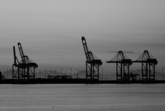 port, horizon, cloud, sea, evening, monochrome photography, skyline, monochrome, black-and-white,