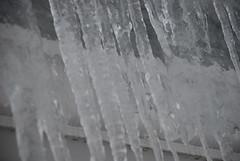 ice, icicle, freezing,