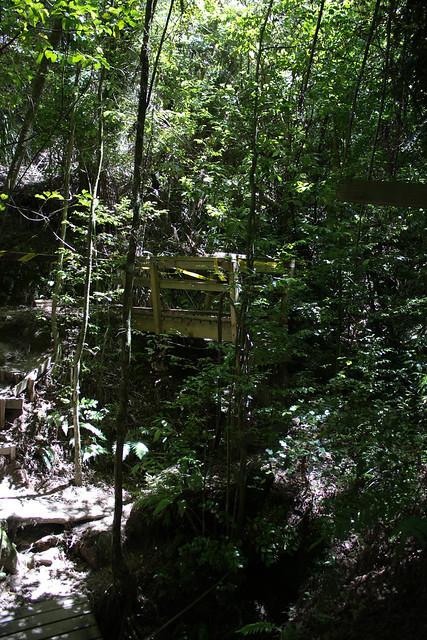 Header of Abel Tasman National Park