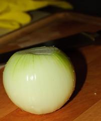 Shadowy Onion