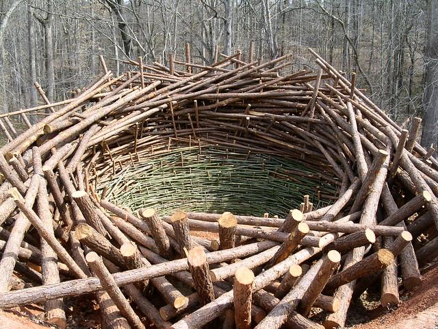 Clay Nest 16