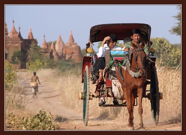 Xe ngựa Kéo ở Bagan