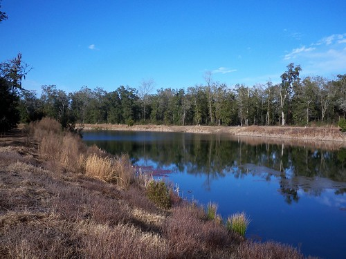 water island land sanctuary lsi