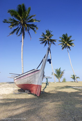 A boat accompanied by three coconut trees