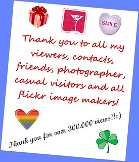Celebrating 6 month on FLICKR and 300.000 individual views of our photographic works! THANK YOU TO ALL OUR FLICKR FRIENDS AND GROUPS!::))