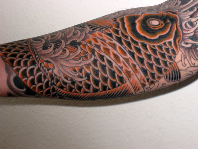 Koi Carp Sleeve Shading and Colour 02042010 103248