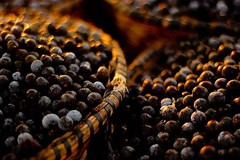 Acai Berry Food