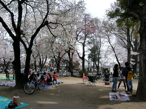 geotagged hanami takasaki 花見 群馬県 高崎 gummaprefecture geo:lat=36320361 geo:lon=139002547