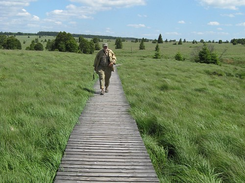 Wanderweg-Eifel