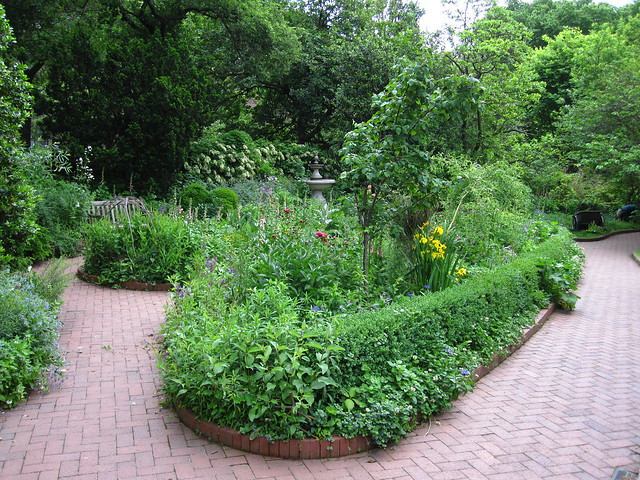 BBG's Shakespeare Garden looking particularly lush and lovely in mid-May. Photo by Rebecca Bullene.