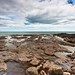 Another From the Rock Pools. North Shore, Superior.
