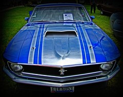 stock car racing(0.0), shelby mustang(0.0), automobile(1.0), automotive exterior(1.0), boss 302 mustang(1.0), vehicle(1.0), antique car(1.0), classic car(1.0), land vehicle(1.0), muscle car(1.0), sports car(1.0),
