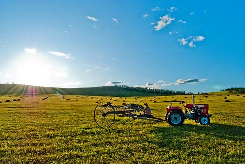 blue autumn sky sun tractor nature grass landscape mongolia hayfield tuv goznaraw хадландаа saikhaniiam