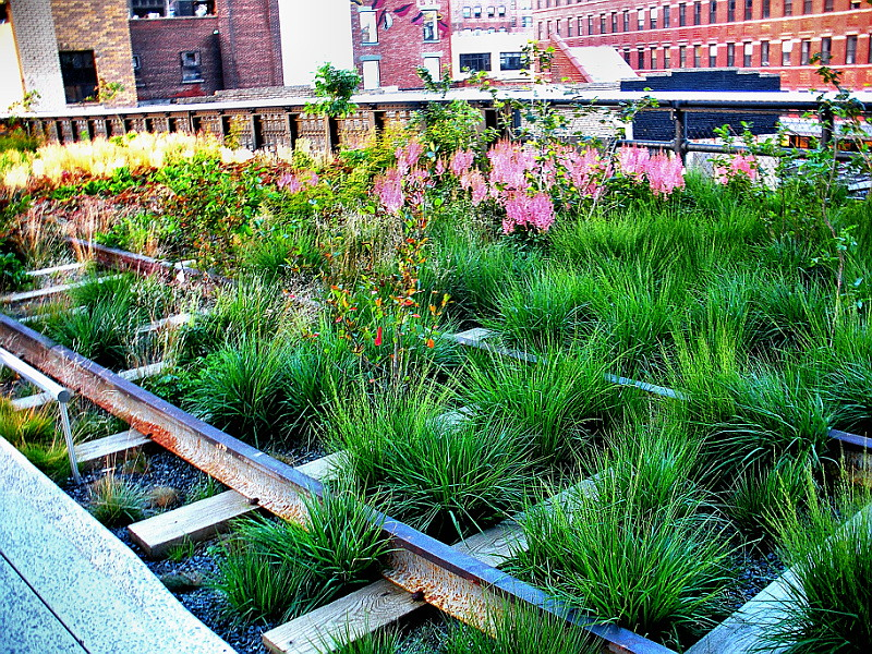 5316Landscaping on the High Line