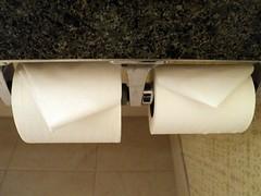 textile(0.0), wing(0.0), necktie(0.0), paper(1.0),