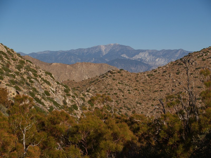 Looking north, we caught a glimpse of San Gorgonio Mountain