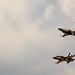 Small photo of Air Power Day 2010 957