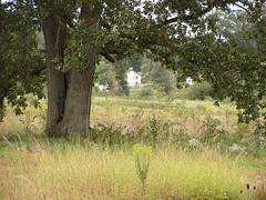 7372 Trostle House, Gettysburg